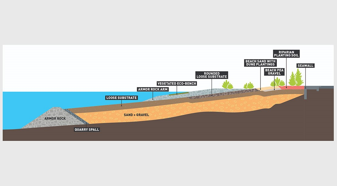 Diagram showing the different layers created to mimic the Elliott Bay ecosystem, including rock, sand, gravel and planting soil.