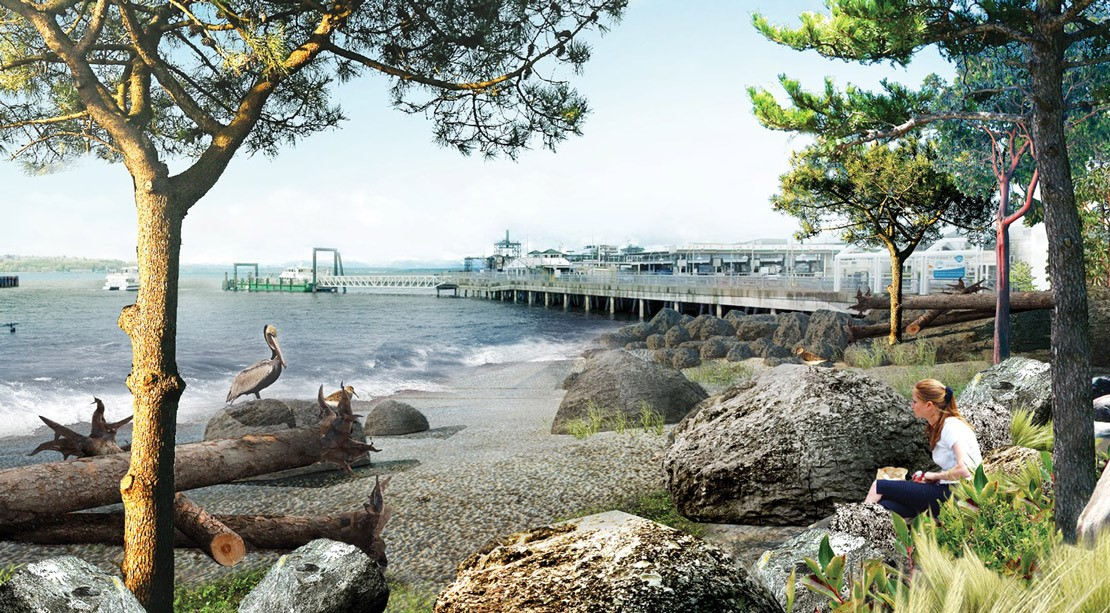 rendering of a habitat beach with rocks, sand, plants and trees, where a woman sits with a notebook and birds rest on logs.