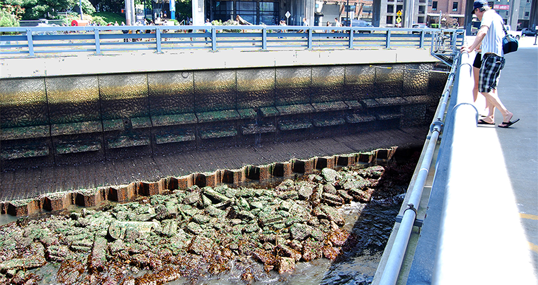 The seawall has a concrete texture made to attract marine life.